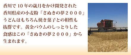 さぬきの夢2000